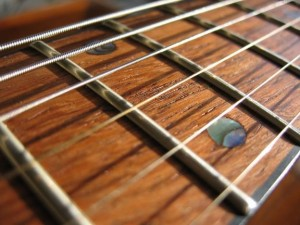 Acoustic Guitar fret board