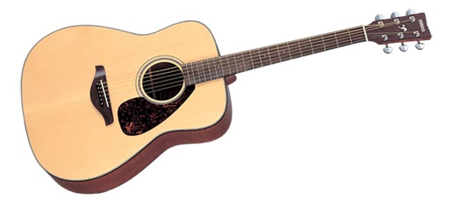 learning to play the guitar for beginners